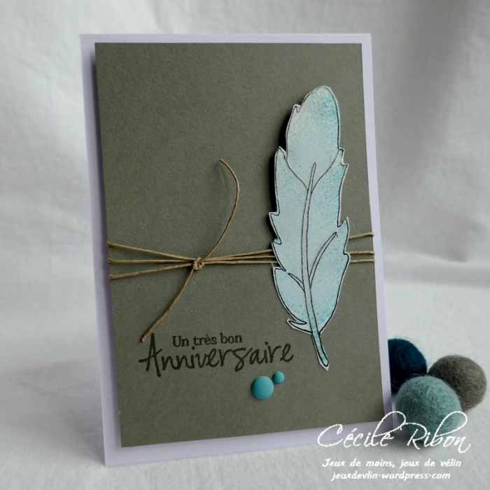 Carte FUSION55 - P1150290