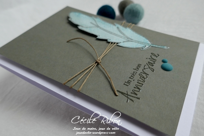 Carte FUSION55 - P1150305
