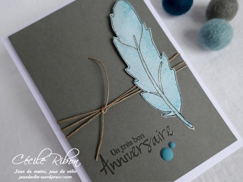 Carte FUSION55 - P1150319