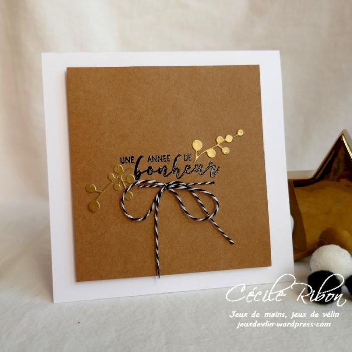 Carte Gwen - P1120267