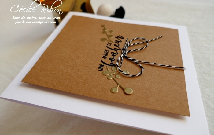 Carte Gwen - P1120269
