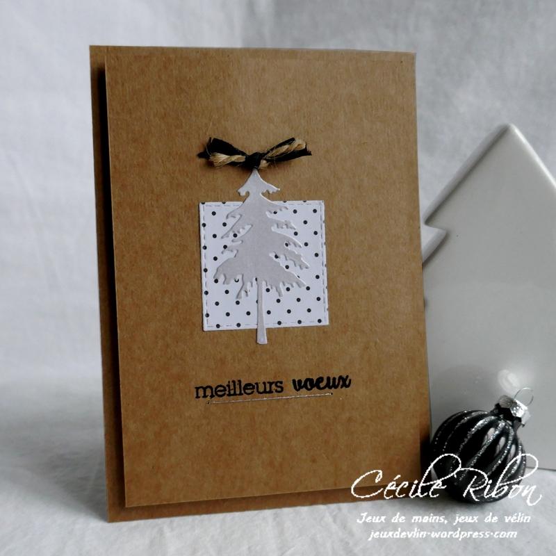 Carte Nat - P1120730