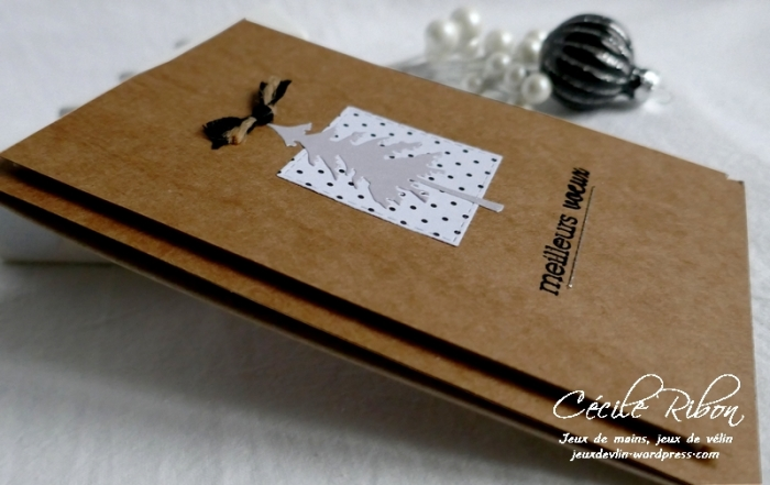Carte Nat - P1120742