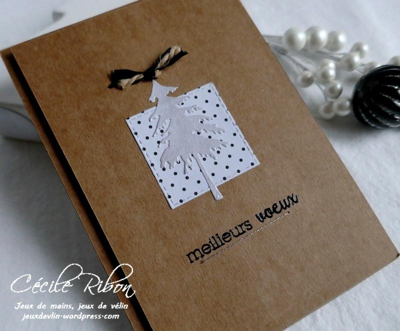Carte Nat - P1120746