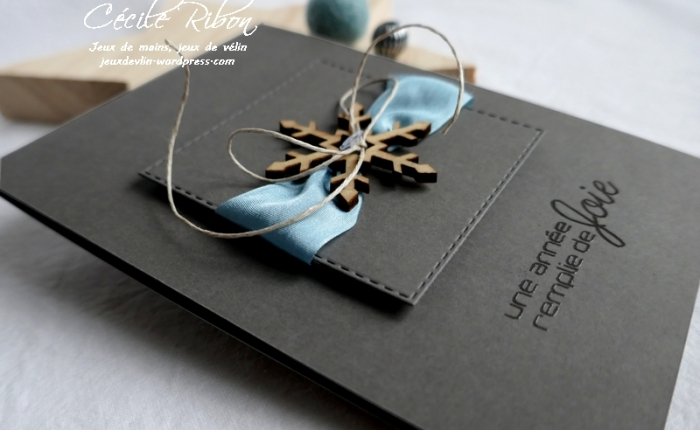 Des vœux en soie #4 – Bleupâle.
