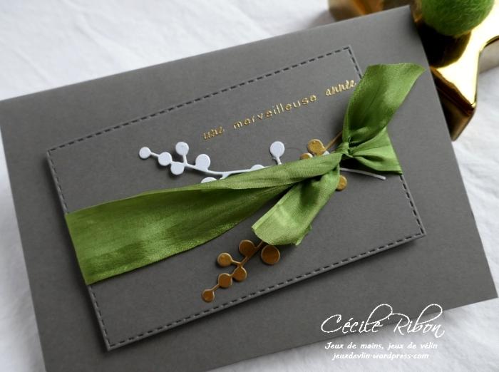 Carte Sophfinette - P1140078