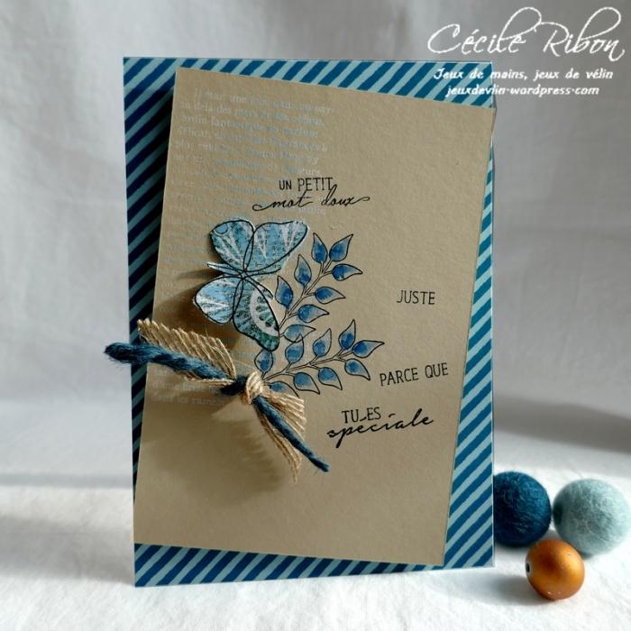 Carte CBBB26 - P1150120