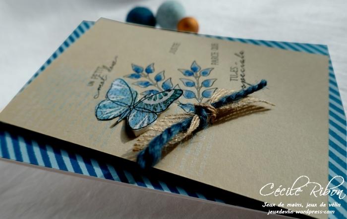 Carte CBBB26 - P1150122