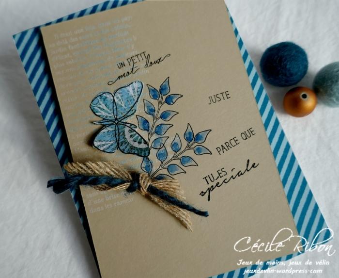 Carte CBBB26 - P1150127