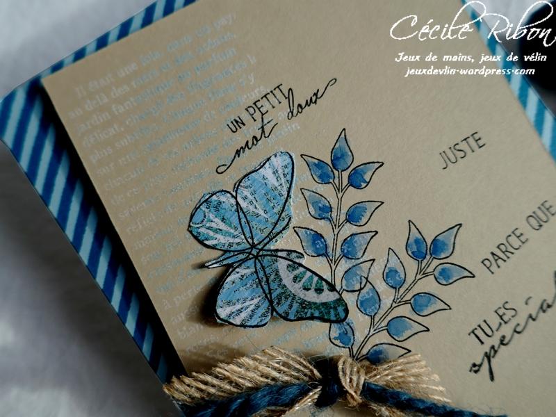 Carte CBBB26 - P1150131