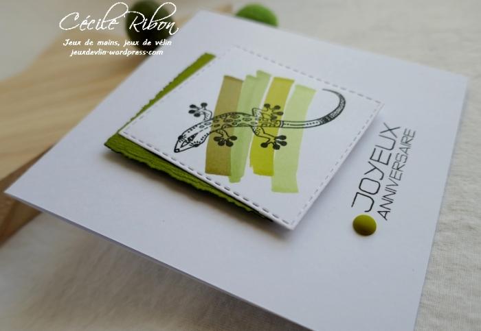Carte CTD584 - P1150748