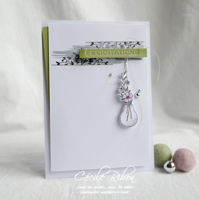 Carte CTS362 - P1150665