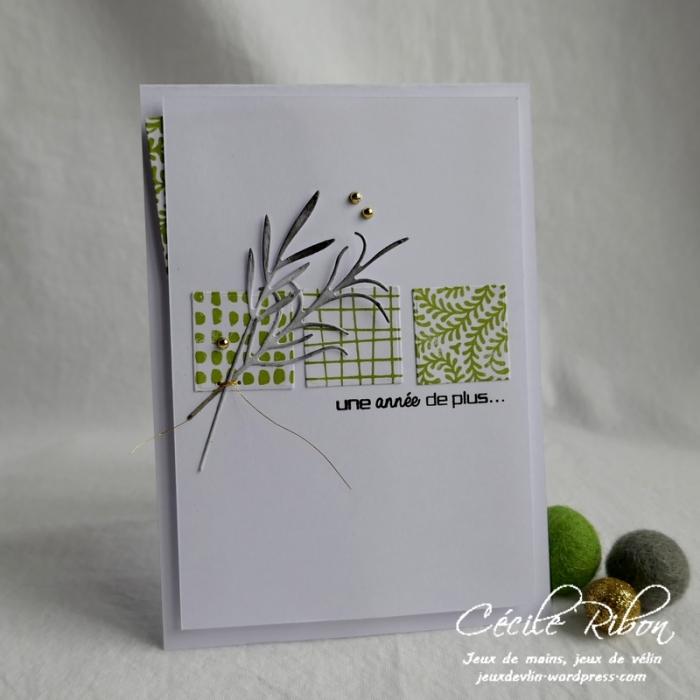 Carte LSMarsInspi - P1150476