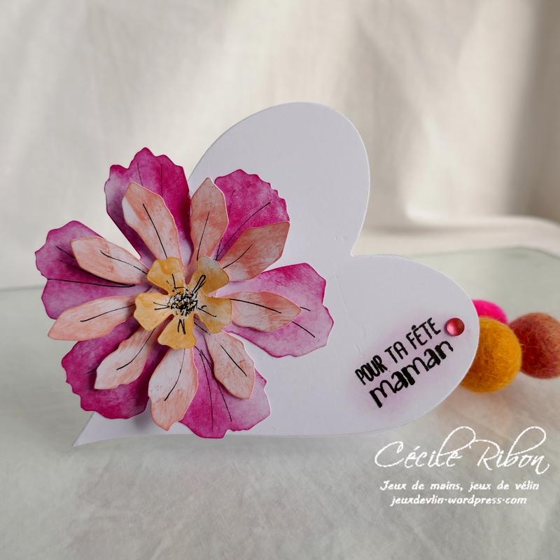 Carte CBBB30 - P1160956