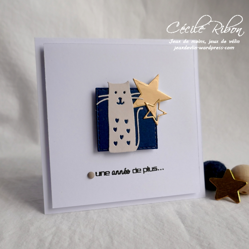 Carte Chat01 - P1160746