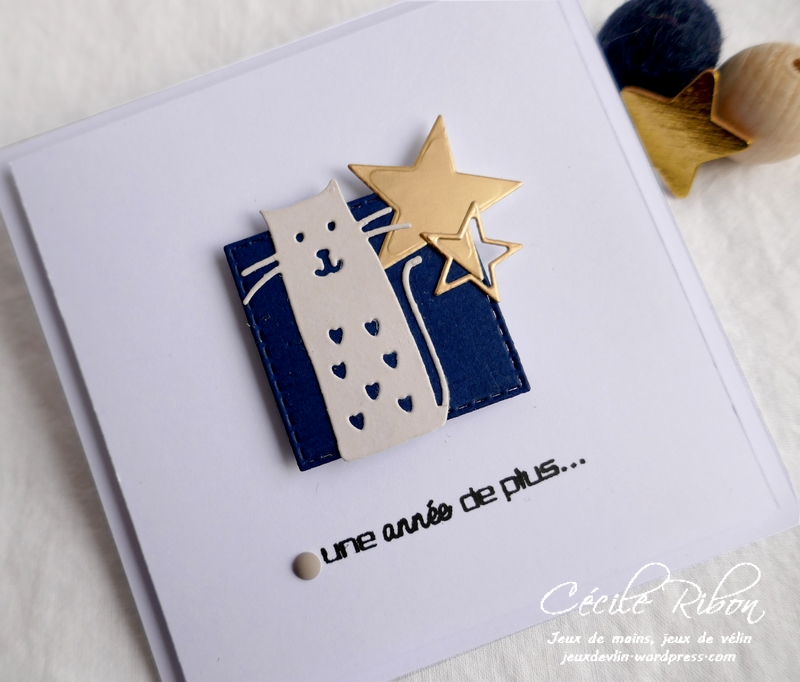 Carte Chat01 - P1160763
