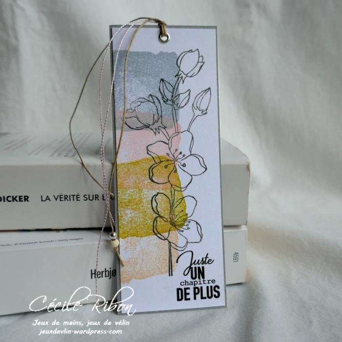 Carte CTD587 - P1160240