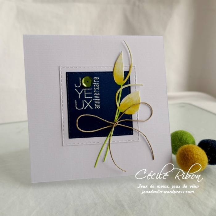 Carte CTD590 - P1160909