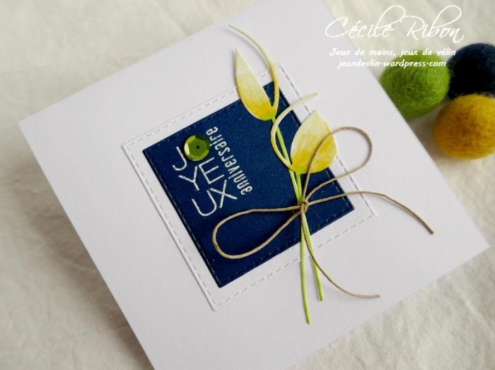 Carte CTD590 - P1160917