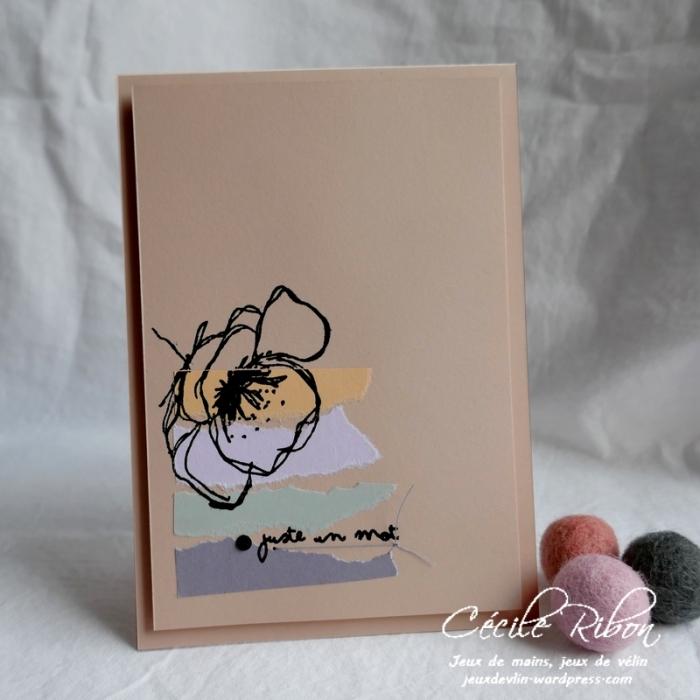 Carte CTS367 - P1160510