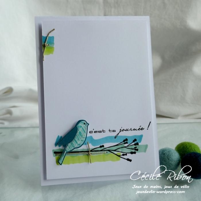 Carte CTS369 - P1170003
