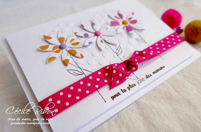 Carte FUSION58 - P1160330