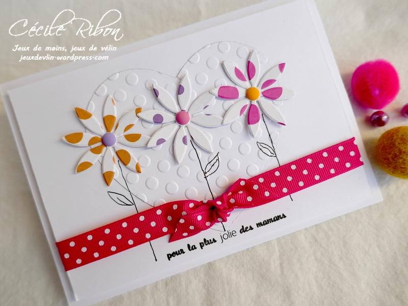 Carte FUSION58 - P1160340