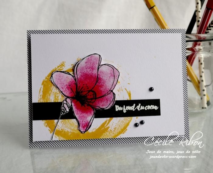 Carte FUSION59 - P1160940