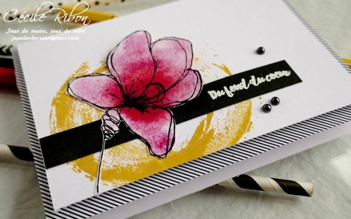 Carte FUSION59 - P1160942
