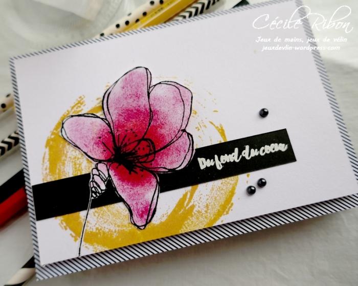 Carte FUSION59 - P1160949