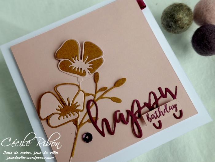 Carte AnnivF01 - P1170140