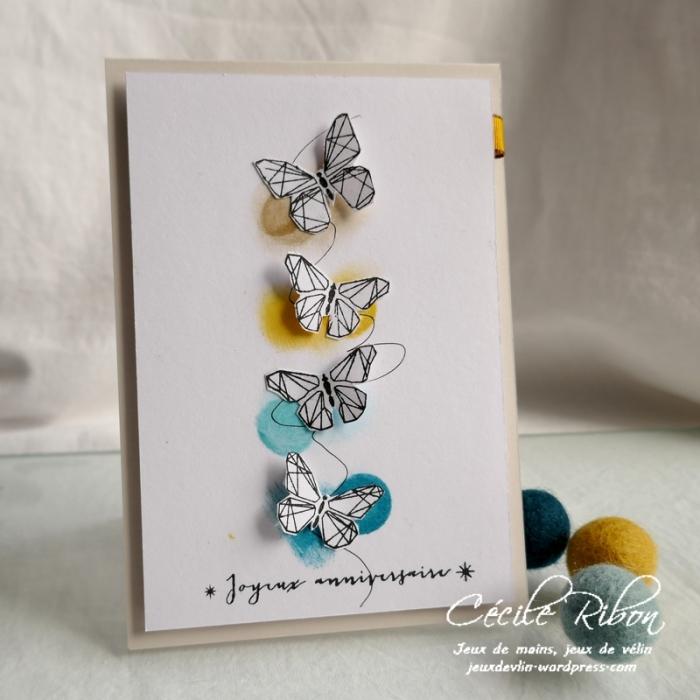 Carte CBBB31 - P1170265