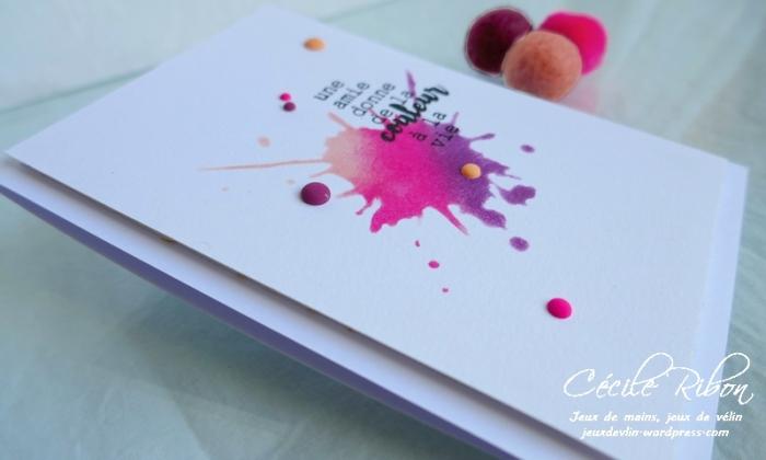 Carte CTD591 - P1170059
