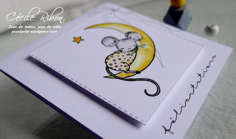 Carte CTD594 - P1170403