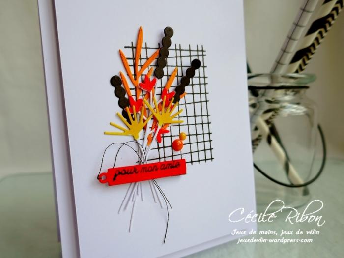 Carte JUGS537 - P1170340