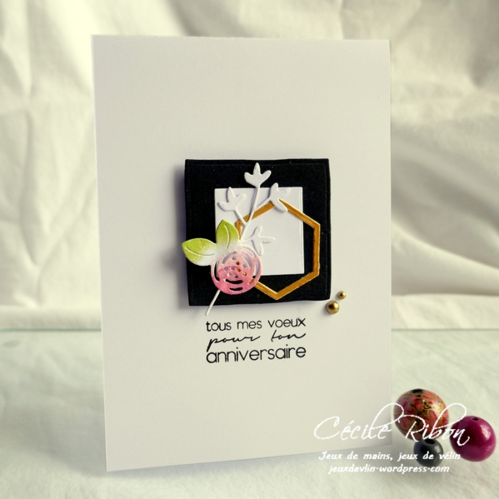 Carte AnnivF02 - P1170807