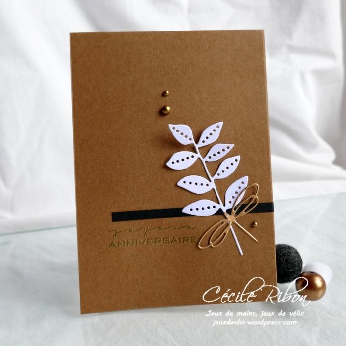 Carte AnnivF03 - P1170876
