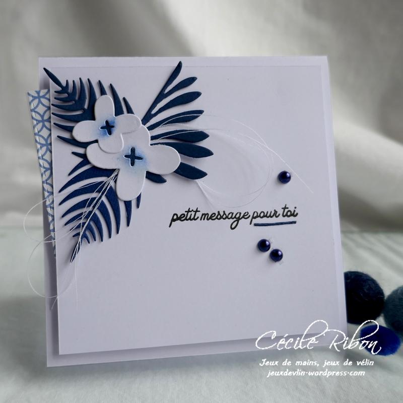 Carte CBBB34 - P1180227