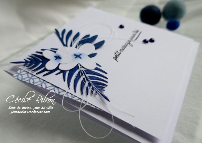 Carte CBBB34 - P1180234