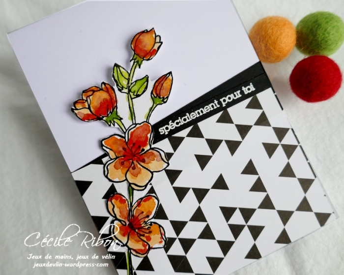 Carte CTD596 - P1170733