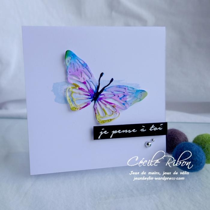 Carte CTD597 - P1170984