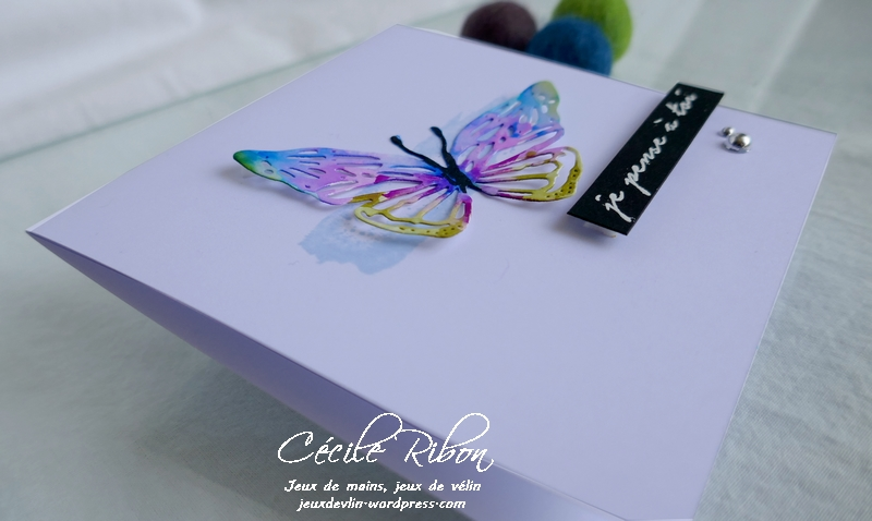 Carte CTD597 - P1170990