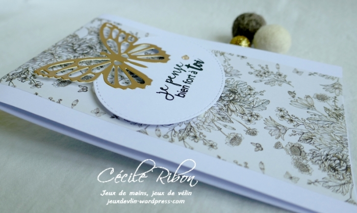 Carte CTS377 - P1180335