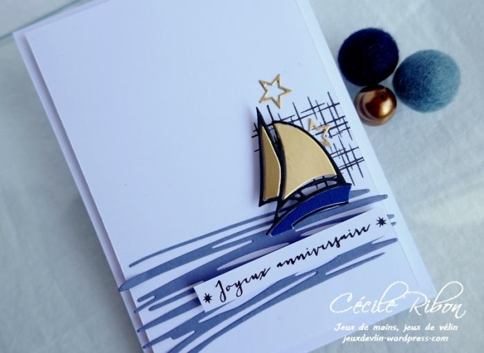 Carte FUSION61 - P1180279