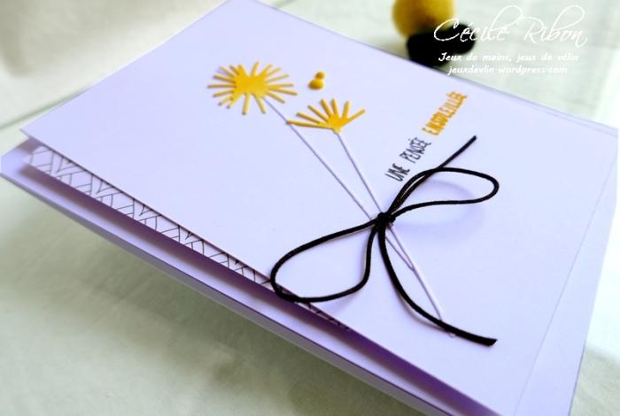 Carte JUGS539 - P1170707