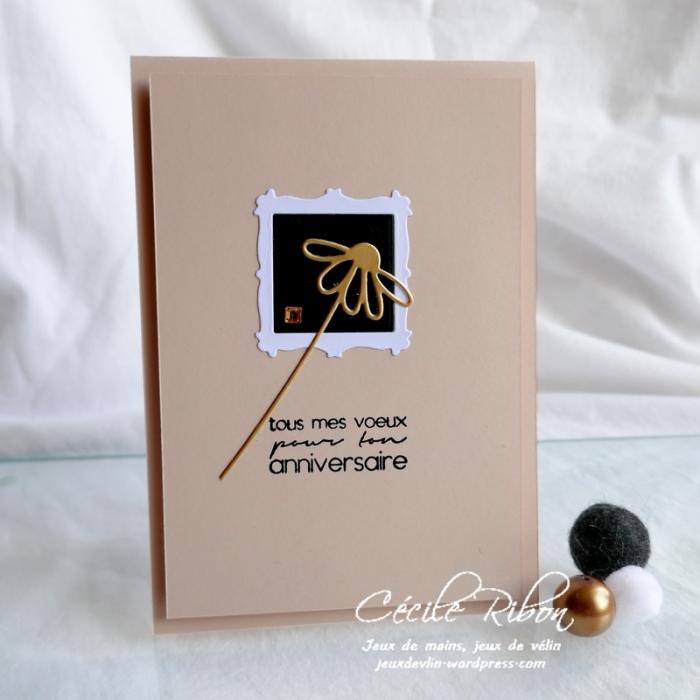 Carte JUGS540 - P1170940