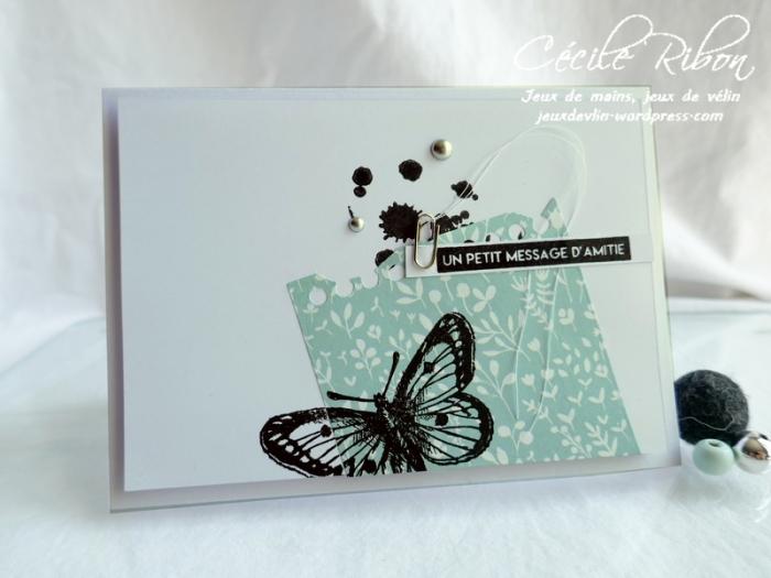 Carte CBBB36 - P1180536
