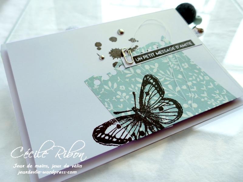 Carte CBBB36 - P1180540