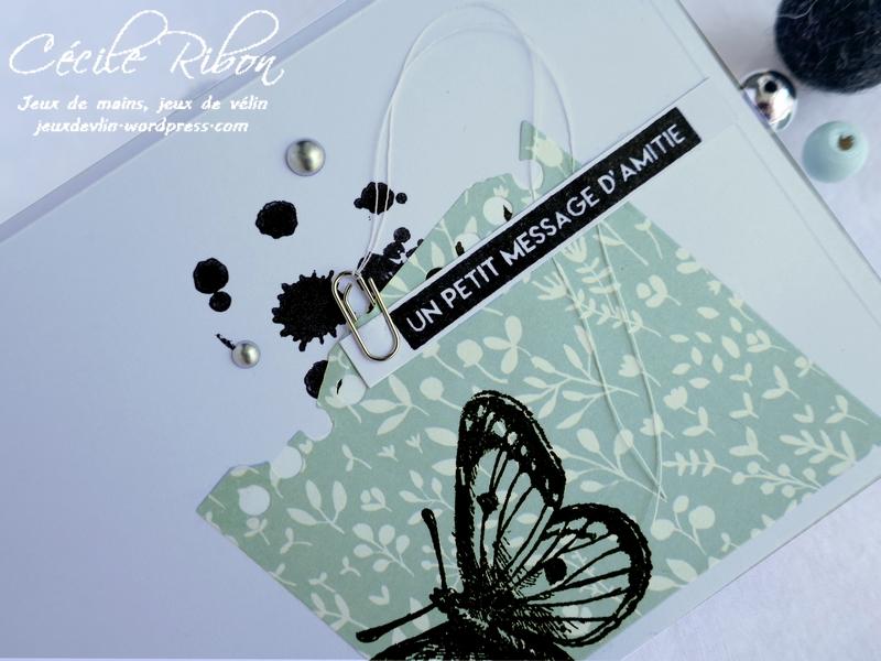 Carte CBBB36 - P1180551