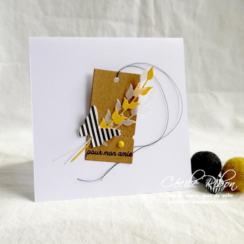 Carte CBBB38 - P1190054